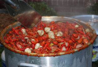 This Might be a Kick Ass Year for Crawfish