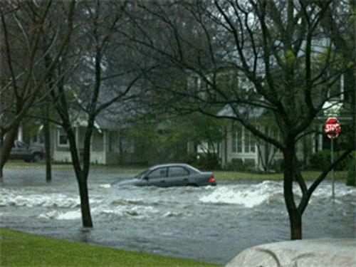 This was the street in front of my house last March. Do I have faith in the city's flood control system?