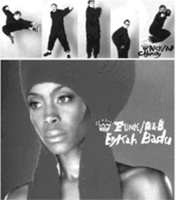 Rock/Pop: Chomsky; Funk/R&B: Erykah Badu