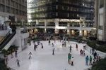Americas Ice Garden