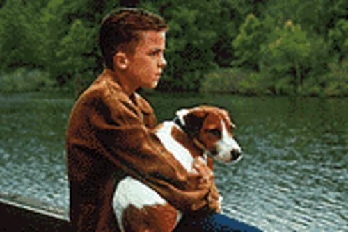 Willie and the po' pup: Frankie Muniz (as Willie, not Malcolm) and his dog Skip