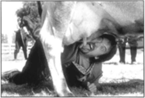 Got milk?: Tom Green is udder-ly bad. ...Oh my stars, we are so sorry for that pun.