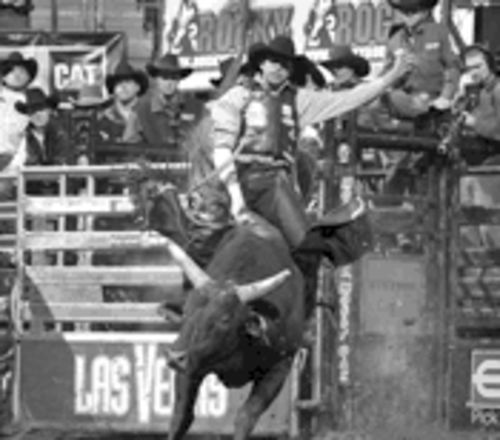 Brazilian Rogerio Ferreira aboard Mossy Oak Mudslinger in the championship round of the Express PBR Classic in Oklahoma City