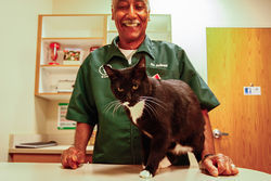 Veterinarians Aubrey Lavizzo (above) and Jean Hofve are leading the campaign to ban declawing across Colorado.
