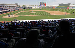Fans flocked to see the AL champions in Arizona's Surprise Stadium, though the team's spring training was disappointing.