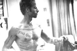 Tat's all, folks: Guy Pierce pieces together the clues in Chris Nolan's beguiling Memento.
