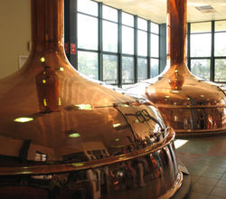 Copper tanks at the Shiner brew house.