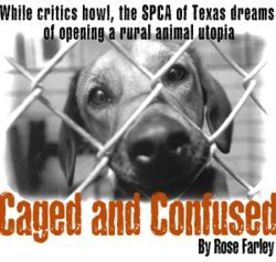 SPCA of Texas Executive Director Warren Cox is fending off critics, while his dream of building an animal shelter in Collin County is slowly slipping away.
