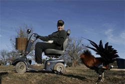 Hobbled by old age, Ratliff, 83, now gets around his farm on a scooter
