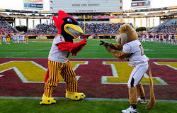 A visit to Tempe for the Insight Bowl is good for the mascots, but bad for their schools&#039; bottom lines.