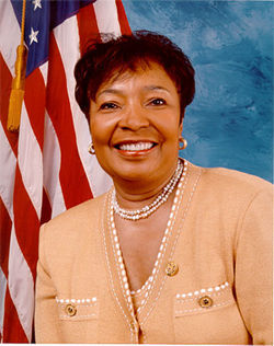 Congresswoman Eddie Bernice Johnson is the good guy in a very bad story.