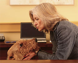 Yolanda Eisenstein, who specializes in pet legal issues, with her pal Marley