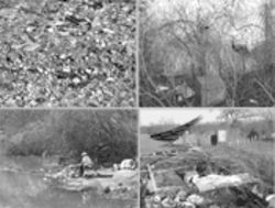 Clockwise from top left: Strange soil near Lemmon Lake, made entirely of broken glass and rubble; on the banks of the Trinity River, where toaster ovens grow in trees; the entrance to Goat Island Nature Preserve; a lone fisherman goes after sand bass among the sunken vehicles.