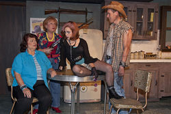 Sally Soldo, Gene Raye Price, Emily Jackson and Justin Vorpahl fire up the comedy in Flaming Guns of the Purple Sage at Theatre Too.