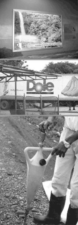 "Banana republic: The Dole sunburst logo is ubiquitous in  Costa Rica, from an ad at Juan Santamaria International  Airport vowing to ""produce in harmony with the  environment"" to the trailers waiting at a processing plant  for their cargo of bananas. The pesticide DBCP was  pumped into the soil with handheld injectors, at bottom."