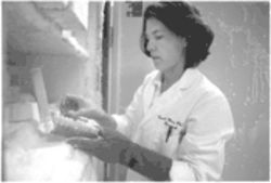 Dr. Carol Wise uses CSI techniques to find mutated human genes.