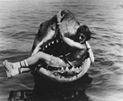 Steven Spielberg, courageous and stupid on the set of Jaws