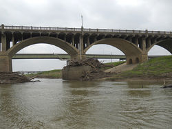 From the river you see huge piles of trees wrapped around the footings of all the bridges—detritus left by high water.