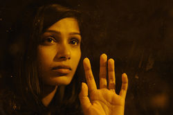 Freida Pinto stars in Miral, a movie as confusing as Middle East politics.