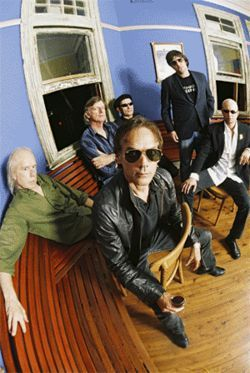 Radio Birdman returns to the roost.