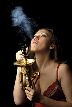 Condoms and vibrators are good, but stay away from hookahs.