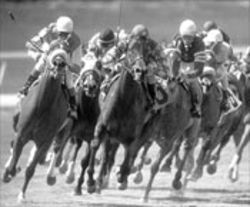 Lone Star Park runs its richest race, the estimated $1 million Texas Classic Futurity, on Saturday.