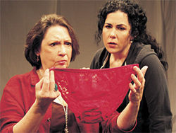 Pam Dougherty (left) and Emily Scott Banks share a sisterhood of the traveling underpants moment in The Clean House at Stage West.