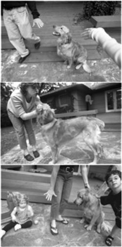 Blatz's gentle training methods employ repetition and praise to positively motivate dogs like Moe. Her techniques may also have a residual benefit of motivating Lily Donald, bottom picture, left, and Max Donald, right, to sit and stay on command.