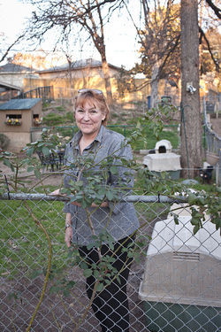 Raanel Steel has had as many as 27 dogs at her Pleasant Grove home.