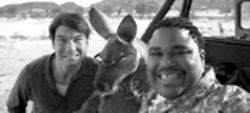 Tie me down, Kangaroo Jack, and then kill me: Anthony Anderson and Jerry O'Connell with their co-star, poor animal. Call the SPCA.